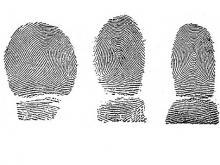 Fingerabdrücke von Asylbewerbern sollen in Zukunft nationalen Ermittlungsbehörden zur verfügung stehen