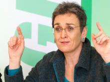 "Ulrike Lunacek: ""Europa muss die soziale Krise lösen"""