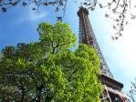 Paris - Stadt der Liebe und der Mode